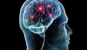 Neurocyclin - ราคา - ราคา เท่า ไหร่ - ของ แท้