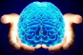 Neurocyclin - lazada - pantip - สั่ง ซื้อ