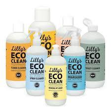Ecoclean – หา ซื้อ ได้ ที่ไหน – ผลข้างเคียง – lazada