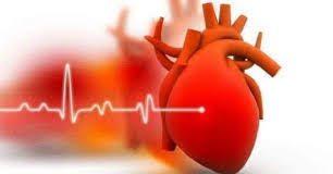 Carditonus Asia – ราคา – ราคา เท่า ไหร่ – ข้อห้าม