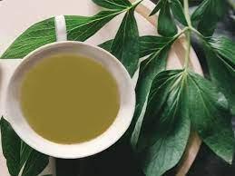 Green Coffee - คืออะไร - ดีไหม - วิธีใช้ - review